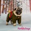 Комбинезон хаки/красный мопс для мальчика теплый для собак породы мопс, французский бульдог