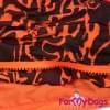 Дождевик Тигра непромокаемый для собак породы йоркширский терьер, мальтезе, чихуахуа, шпиц, ши-тцу, папильон, пекинес, той пудель, пинчер, фокстерьер, цвергшнауцер, кокер спаниель