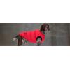 Жилет Dog J Gray2 для амстаффа, бультерьера, шарпея