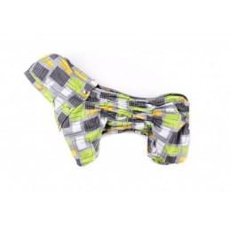 Дождевик Wind осенний с капюшоном для собак