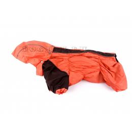 Дождевик Апельсин осенний с капюшоном для собак