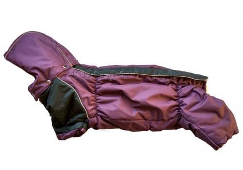 Комбинезон Long Lilac зимний на синтепоне и флисе с капюшоном для собак породы такса и вельш корги