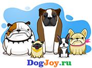 DogJoy.ru